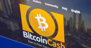 BitPico声称比特币现金98%的节点运行在同一台服务器上