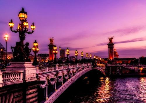 法国设立专门机构加强人工智能研究