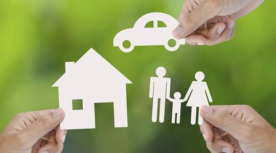 清华大学王言:大型保险公司在保险科技浪潮中行动迅速且大量投入