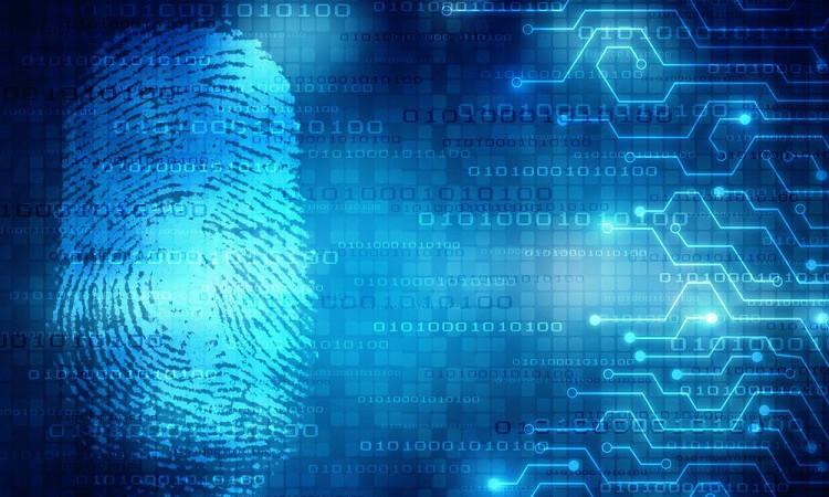 社交网络采用Civic的区块链ID系统